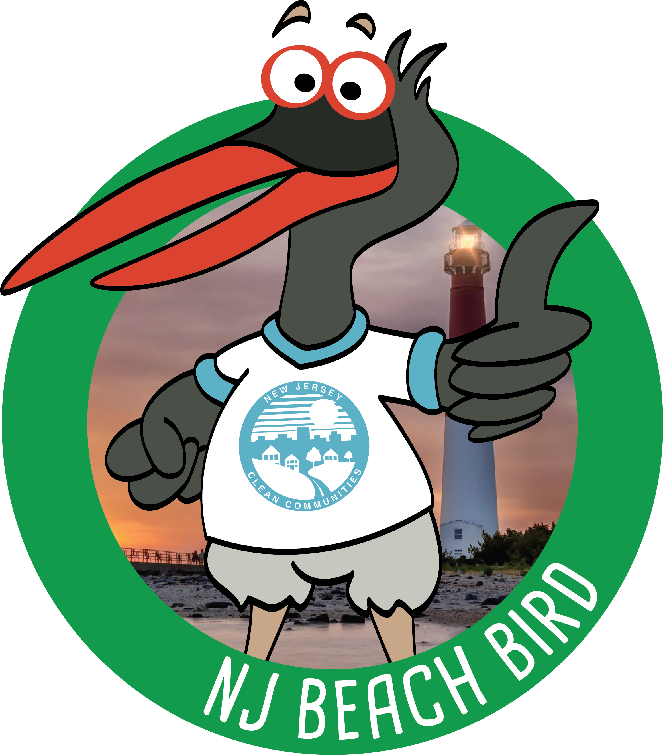 NJ Beach Bird